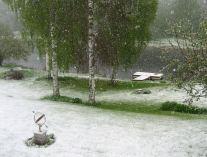 Syttende mai 2008
