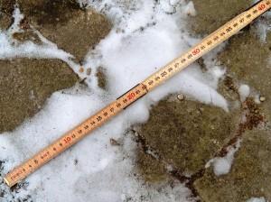 30 cm snö uppmätt i Skåne