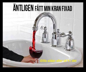 Den optimala blandaren med vin