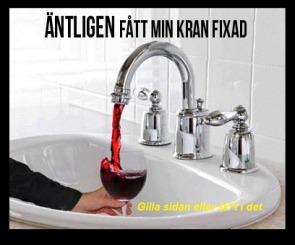 Den optimala blandaren med vin