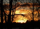 Herrgårdsparken solnedgång
