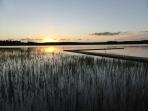 Olsäter Lillsjön 2 juli 2016 ca 23:00