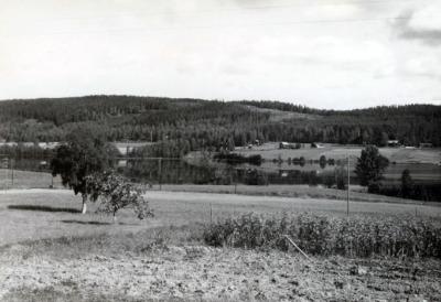 Lidsjön från hustrappan runt 1960_rev