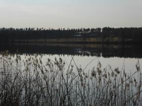Stilla Rådasjön på kvällskvisten