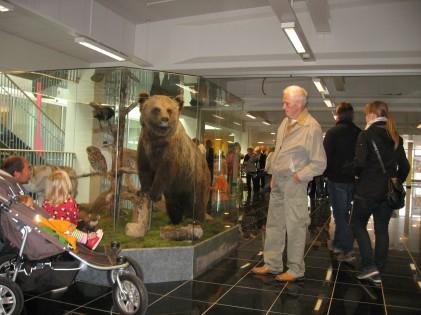 Vestibulen monter med björn