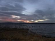 Rådasjön från Södra Gärdet 12 dec 2013