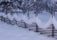 2014-01 Snöskulptur på gärdesgård i Stjärn