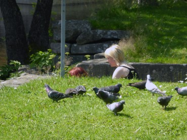 2014 Filipstad Vid Skillerälven... bilden från samma park