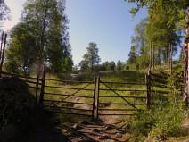 2014-07 Ritamäki Grind, alltså uppe. Plus 1 km och vi varit i Norge