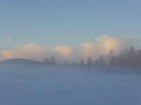 ... och här norrut - syns nästan att det är Sjögrändsviken ;-)