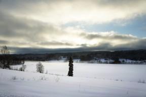 Mot Södra Väsby från Lidsängarna