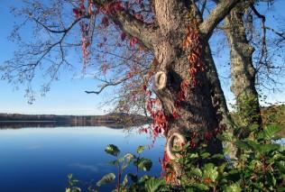 Rådasjön norrut