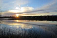 ... här från Sjögrän en annan dag