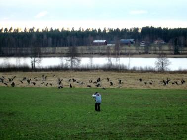 Fågelfotografen blev visst själv fotograferad