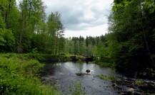 20150619Midsommar Sunnemo Hyttdalen Lidsjön62