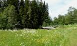 20150619Midsommar Sunnemo Hyttdalen Lidsjön63
