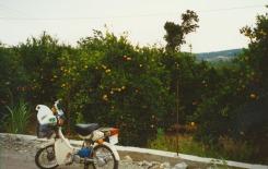 1998 Kreta Aqua Marina 8