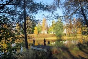 2015-10 Från Herrgårdsparken Fiske