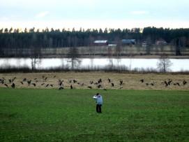 En fotograf var anledningen till att dom flydde fältet :-(