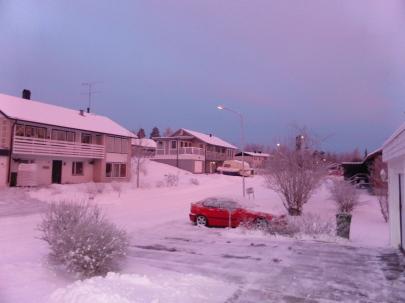 2017-01 Björkbacken fr trädgården