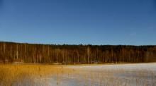 20160213-sjograndsviken