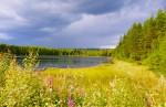 Sunnemo/Hagfors Älgsjötjärn