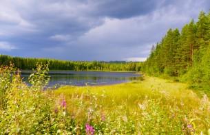 Sunnemo Älgsjön tjärn
