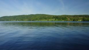 Här Lidsjön nedifrån bryggan. Det sägs att gäddstammen lär ha återhämtat sig idag ;)