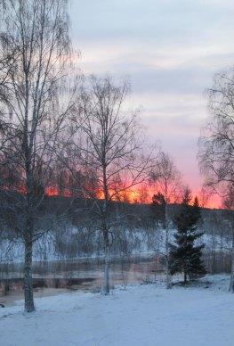 2019-01 Vintermorgon från balkongen