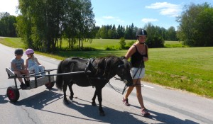Stjärnsfors Ponnyekipage