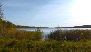 Rådasjön fr Sjögränd