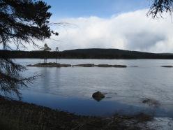 2006-04 Tyngsjö Bredsjön