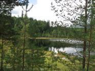 2011-08 Bunnertjärn norr Lakenesjön