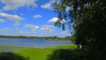 2019-07 Olsäter Lillsjön