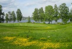 Uddeholms GK Bild mot röd tee hål 7