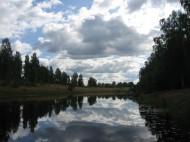 2016-06 Uvån nedströms fr vår brygga